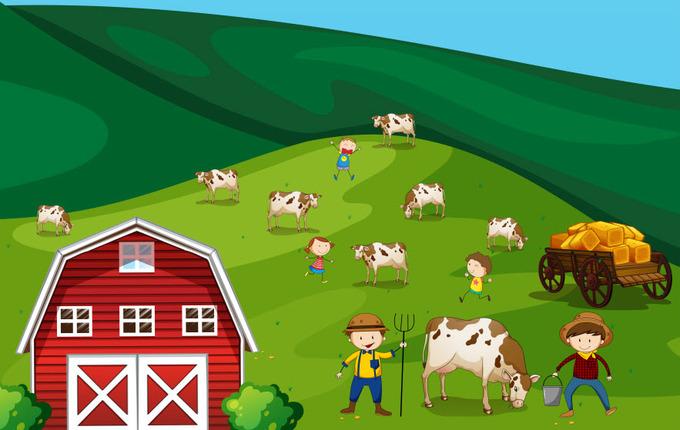 Farmers Rewards Card